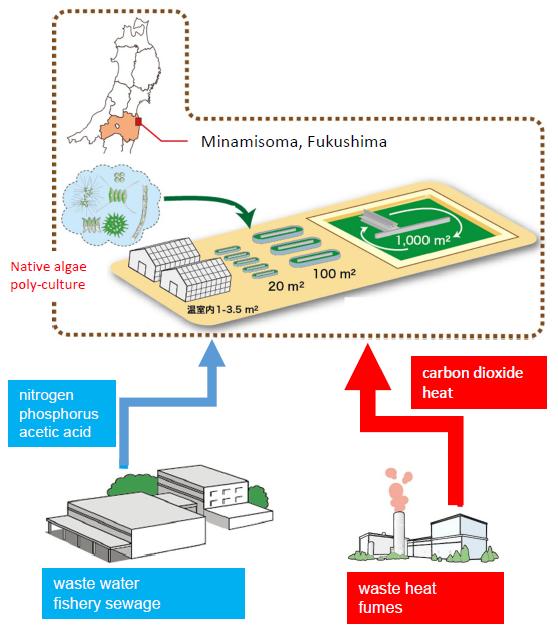Project – 藻類バイオマス・エネルギーシステム開発研究センター